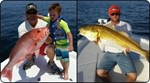 Pensacola Fishing Charters in the Florida Panhandle