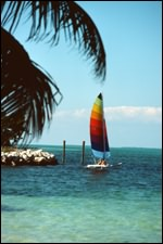 Sailboats in Florida come in all sizes!